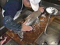 鮭塩引き道場